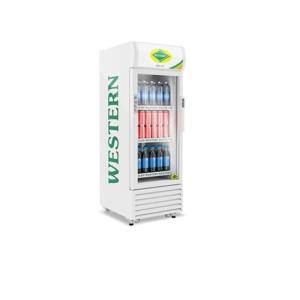 Bottle / Visi Coolers